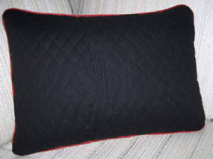 Pillows/051ReversSidePillow.jpg